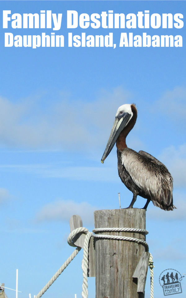 Favorite family destinations, see all the things to do in dauphin island, alabama